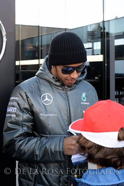 Formula1_2014_1